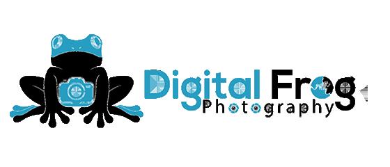 Digital Frog Photography