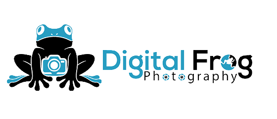 Digital Frog Photography